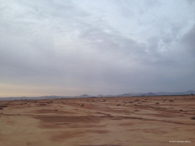SJM_Watermark_Desert
