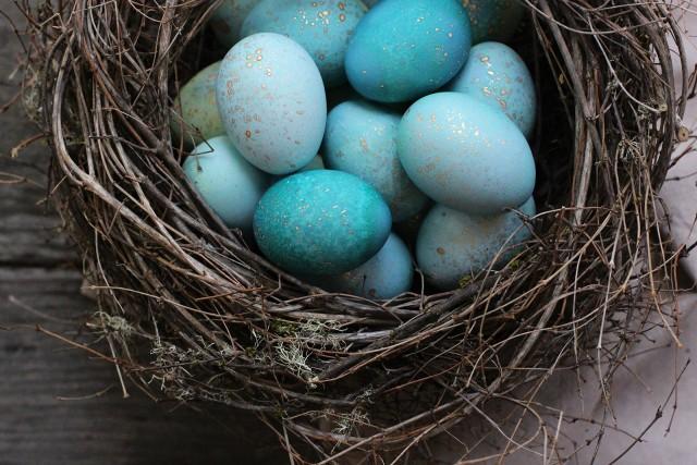 An Eggcellent Egg Decorating Eggstravaganza