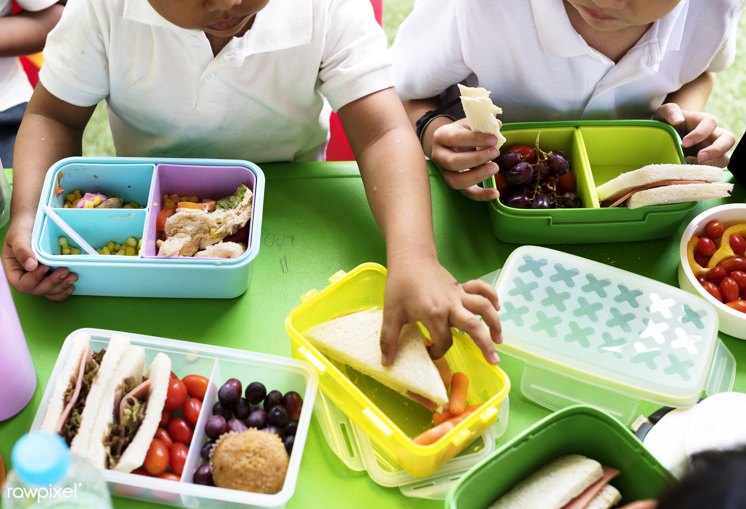 School Days Are Here Again | Preparing for Another School Year Part 4 School Lunches